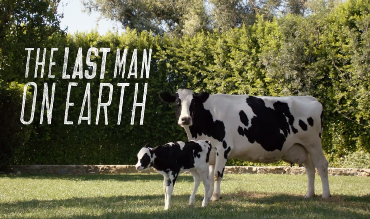 the-last-man-on-earth-filming-locations-no-bull-cows