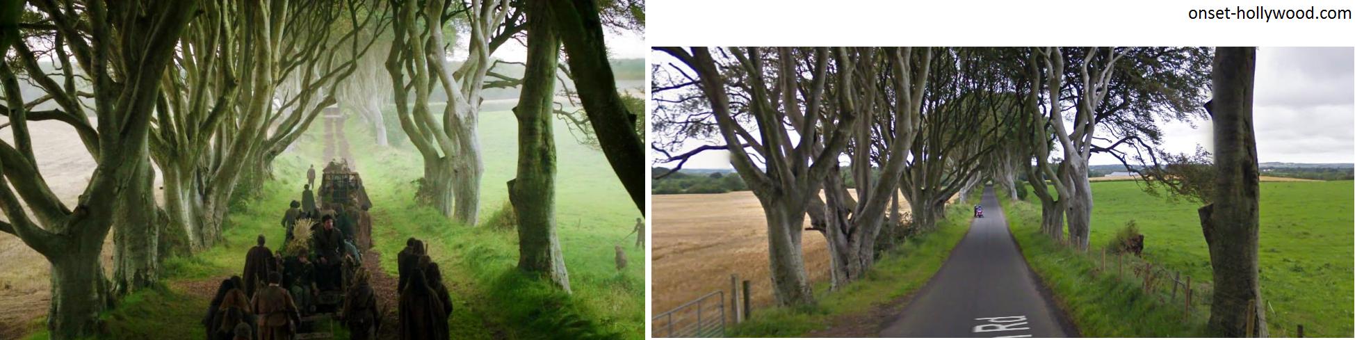 game-of-thrones-filming-locations-Dark-Hedges-ireland
