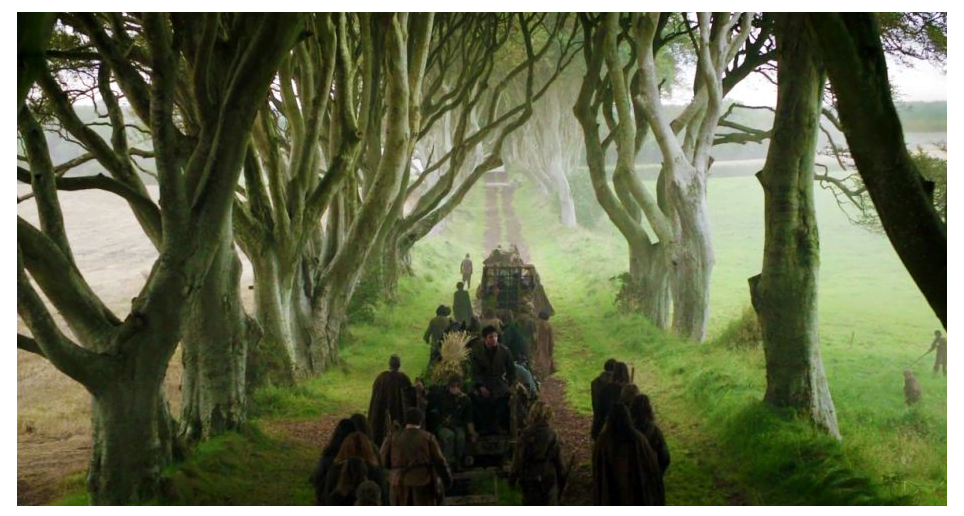 game-of-thrones-behind-the-scenes-trees