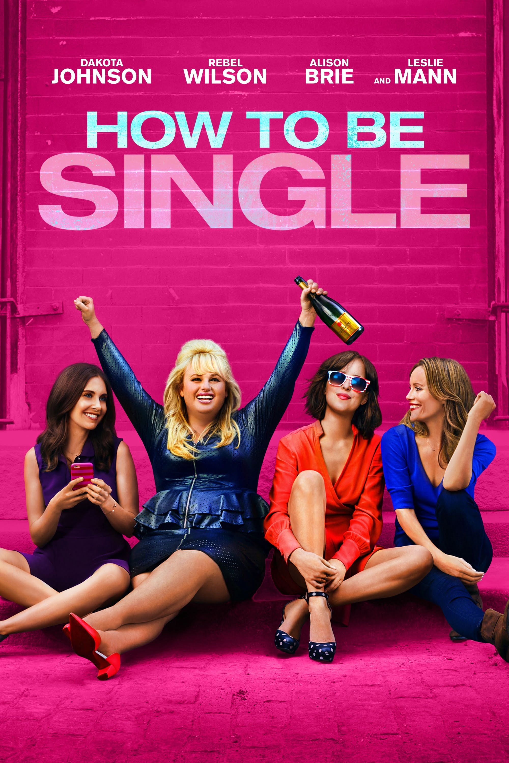 how-to-be-single-filming-locations-dvd-poster