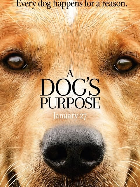 a-dogs-purpose-filming-locations-poster